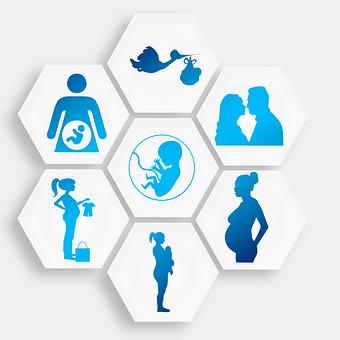 pregnancy-1749858__340